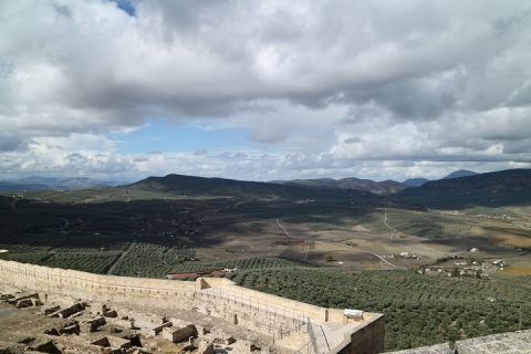 1667 Castillo en Alcala-M