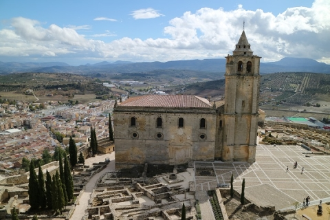 1685 Castillo en Alcala-M