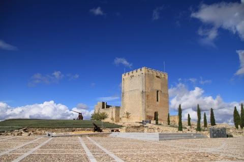 1720 Castillo en Alcala