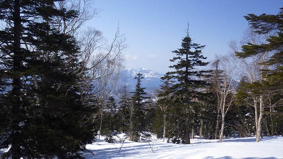 山飯森 139