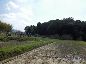 20160320_14山の辺の道