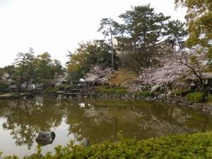 20160402_10中村公園