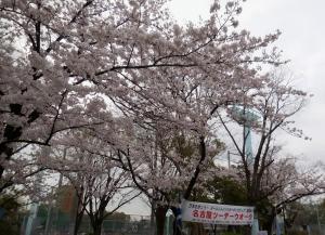 20160403_01熱田神宮公園
