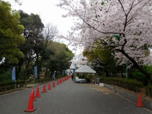 20160403_31熱田神宮公園