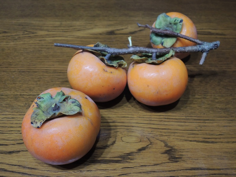 柿 その1
