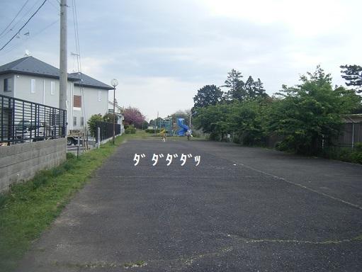 DSCF1201.jpg