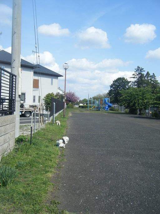 DSCF1251.jpg