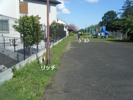 DSCF1307.jpg