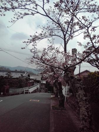 2016_03_26_カーテン交換_39