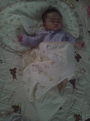 いちごの睡眠1