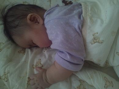 いちごの睡眠2