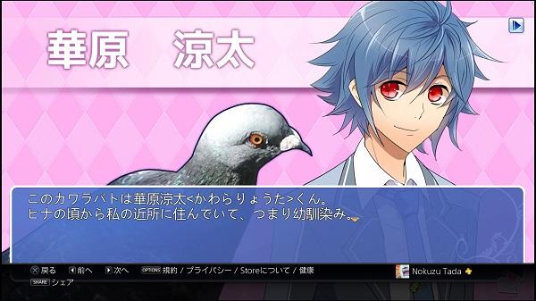 PS4 PSVITA 乙女ゲーム 乙ゲー ハト 鳩 ハートフル彼氏 PSstore 1000円 はーとふる彼氏