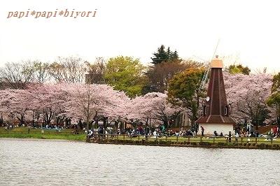 桜2016★6