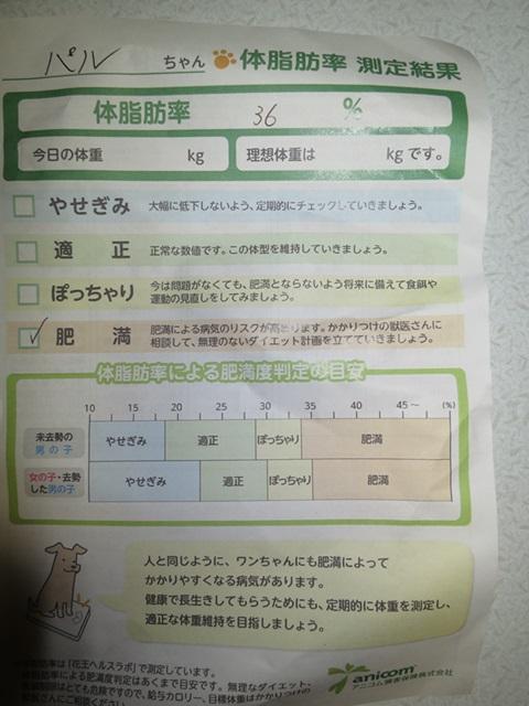 1_2016031321532331b.jpg