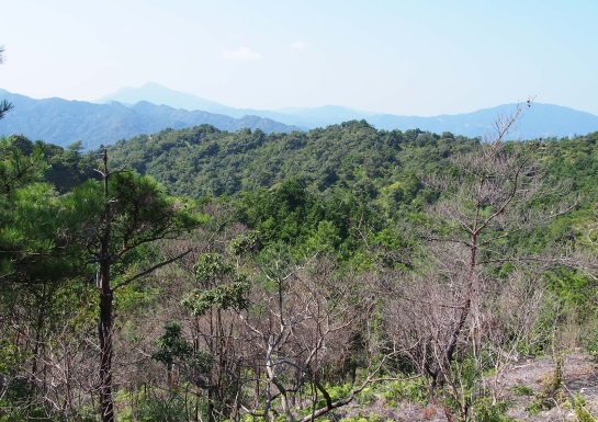 0鋸岳2012月10月7日