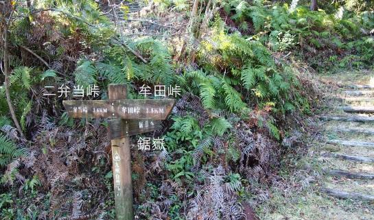 2鋸嶽蕗嶽4