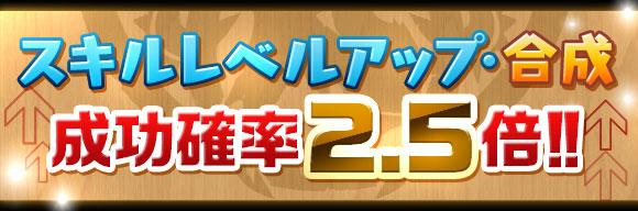 skill_seikou2_5x_2015110515270891a.jpg
