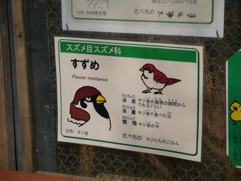 zoo-1000277.jpg