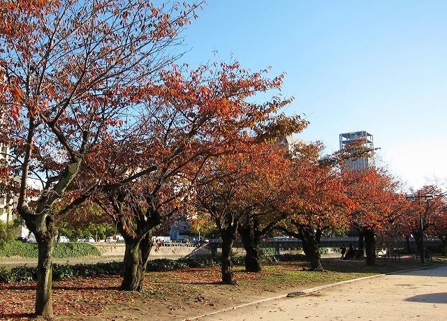 平和公園の秋5