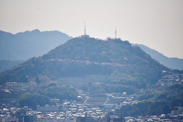 二葉山13
