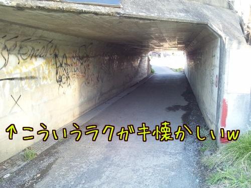20160315010.jpg