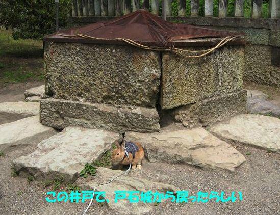 ue.20900529 上田城 010-1
