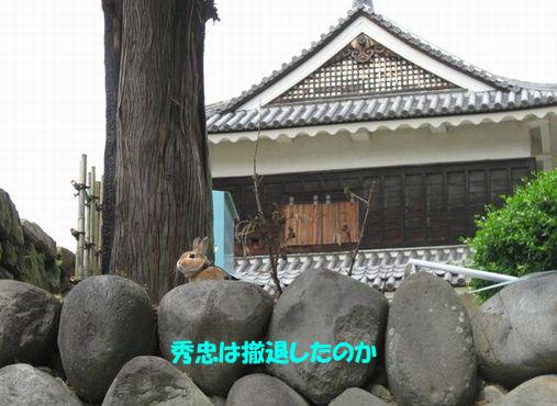 ue.20900529 上田城 010-2