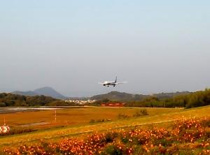 空港公園1