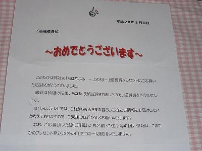 P1150500.jpg