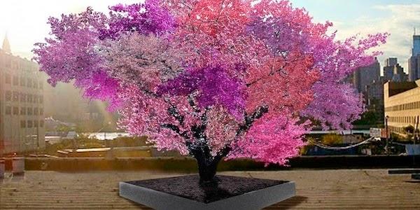 Tree-of-40-Fruit.jpg