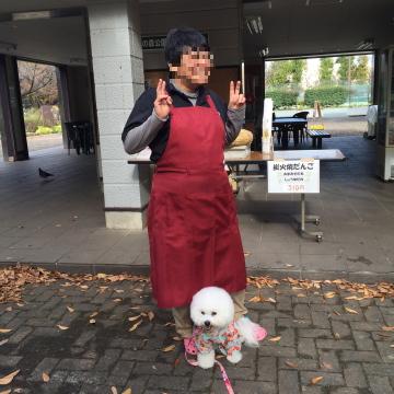 ashimoto5_20151124215539901.png