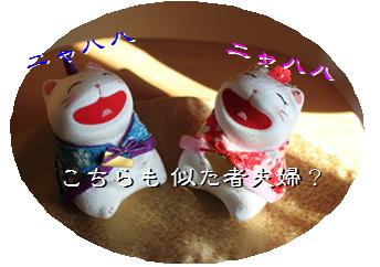 blog201511.jpg