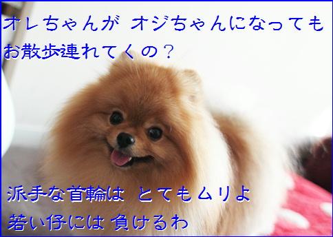 blog20151103-1.jpg