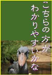 blog20151120-2.jpg