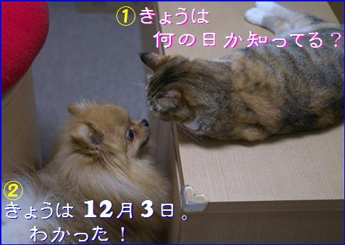 blog20151203-2.jpg