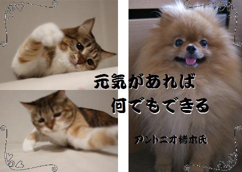 blog20151203-4a.jpg