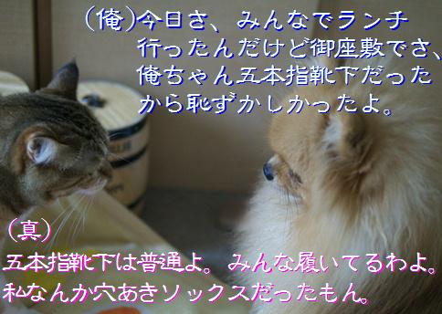 blog20151206-1.jpg