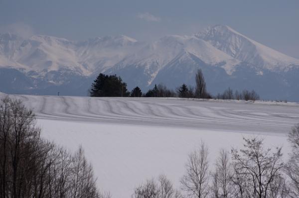 融雪剤と山