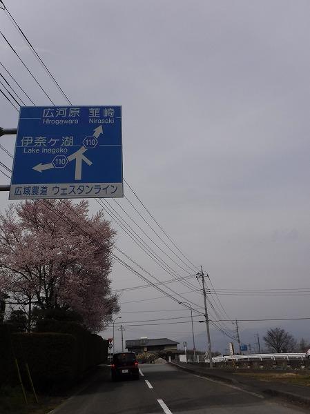 DSCF7438.jpg