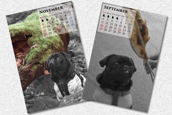 来年のうるまカレンダー