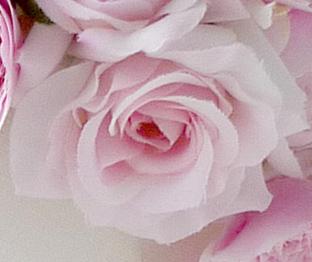 ウェディングのヘッドドレス+アーティフィシャルフラワーの画像+ピンクのバラ