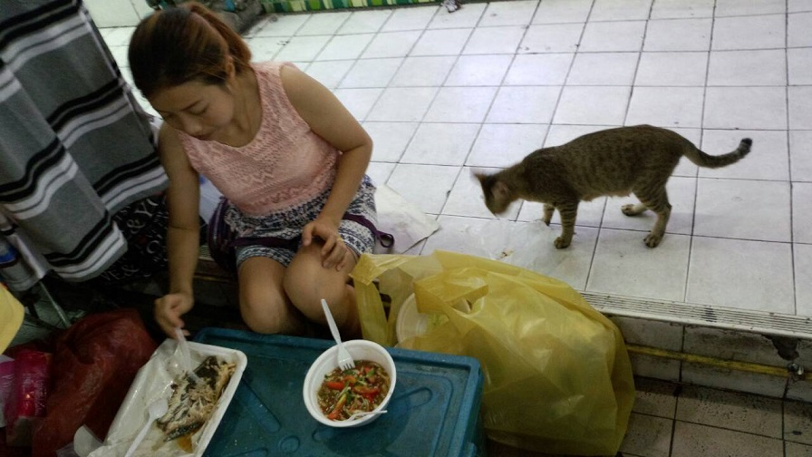 タイの屋台ではよく見る光景ですが、屋台のご主人やアルバイトの子が猫にもご飯をあげています1