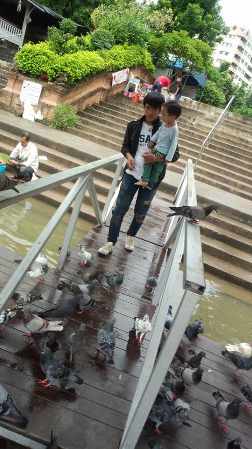 ミーママが動物達に毎日会いに行く、大好きなタイ・チェンマイの寺院。地元の人達に親しまれている寺院でツアー客が来ない穴場の癒しスポット