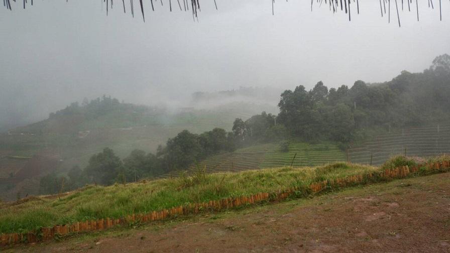 小雨に煙るタイ・チェンマイの山3