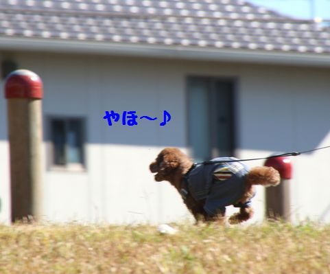 IMG_48702.jpg