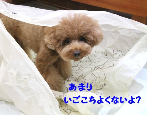 IMG_50692.jpg