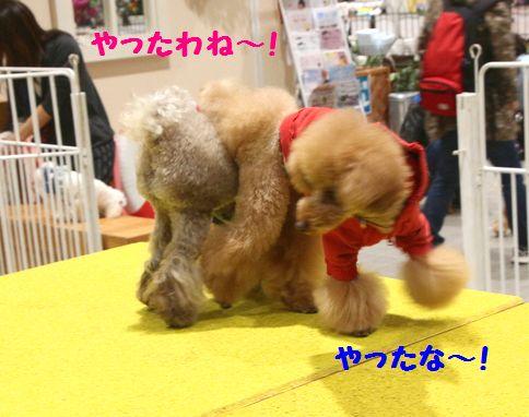 IMG_54142.jpg