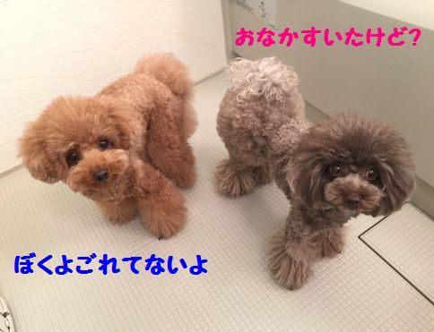 IMG_56142.jpg