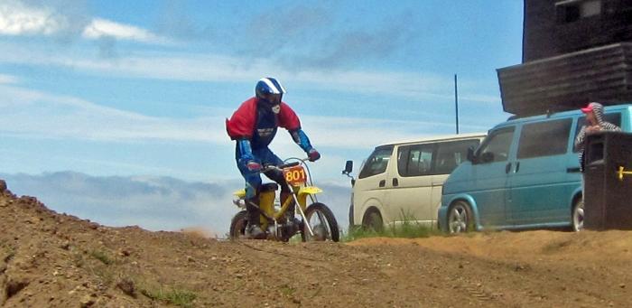 cub-race (350)