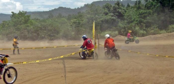 cub-race (353)
